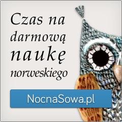 Darmowy kurs języka norweskiego